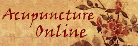 Acupuncture Online by Meredith St. John